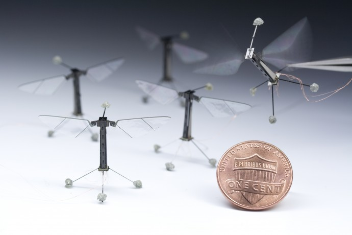 공중에서 임무를 수행하는 드론(무인비행체)의 체공 시간을 늘리기 위해 최근 다양한 '휴식 기술'이 개발되고 있다. 미국 하버드대 연구진은 정전기를 이용해 천장에 붙어서 쉴 수 있는 초소형 드론 '로보비'를 고안했다. - 하버드대 제공